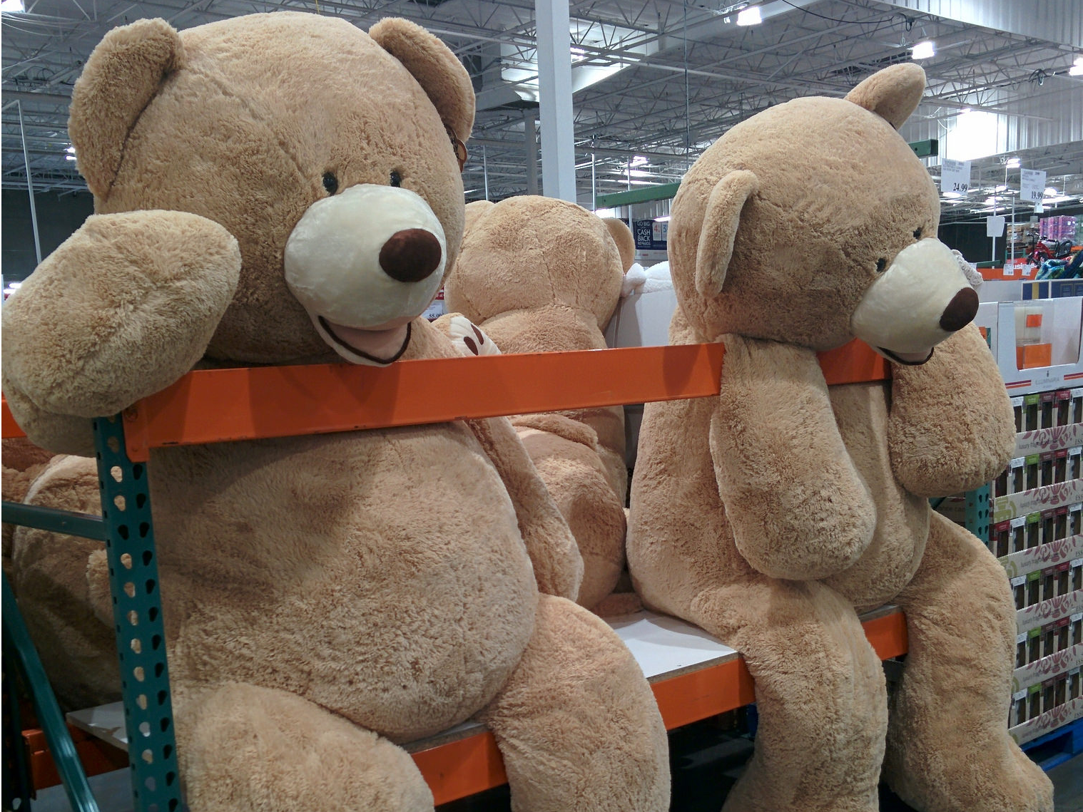 6 comically large items you can buy at Costco Big