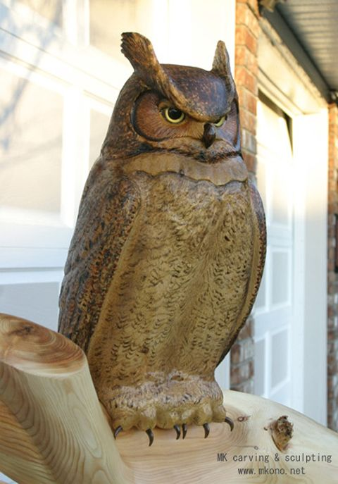 Title Quot Great Horned Owl On Branch Quot Material Yellow Cedar