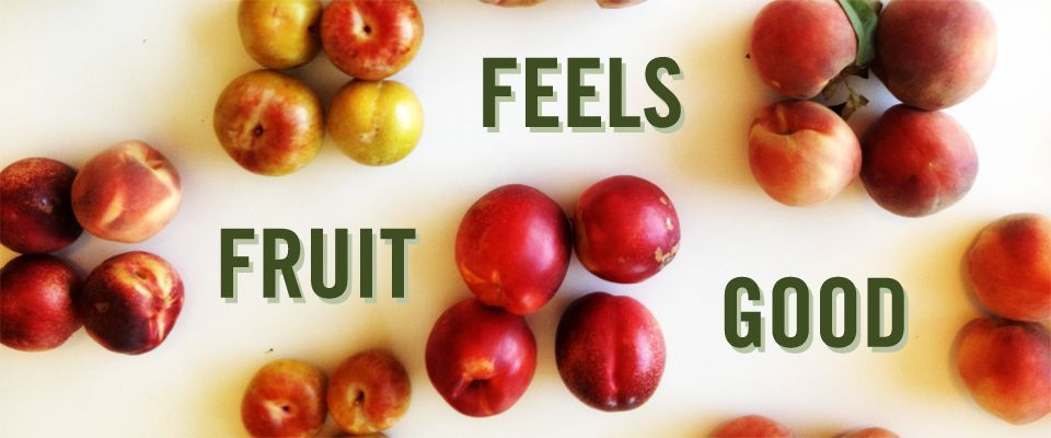 Not only are fruits good they also feel good nutrition