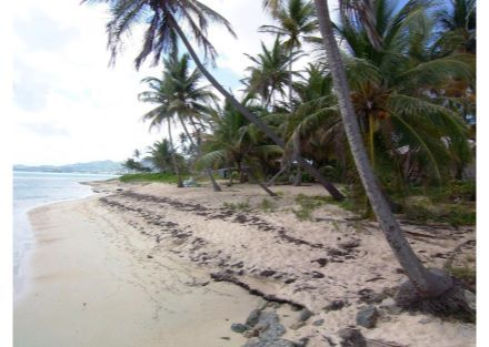 43C Little Princesse Co, St. Croix, Company  00820 - Pinned from www.coldwellbanker.com