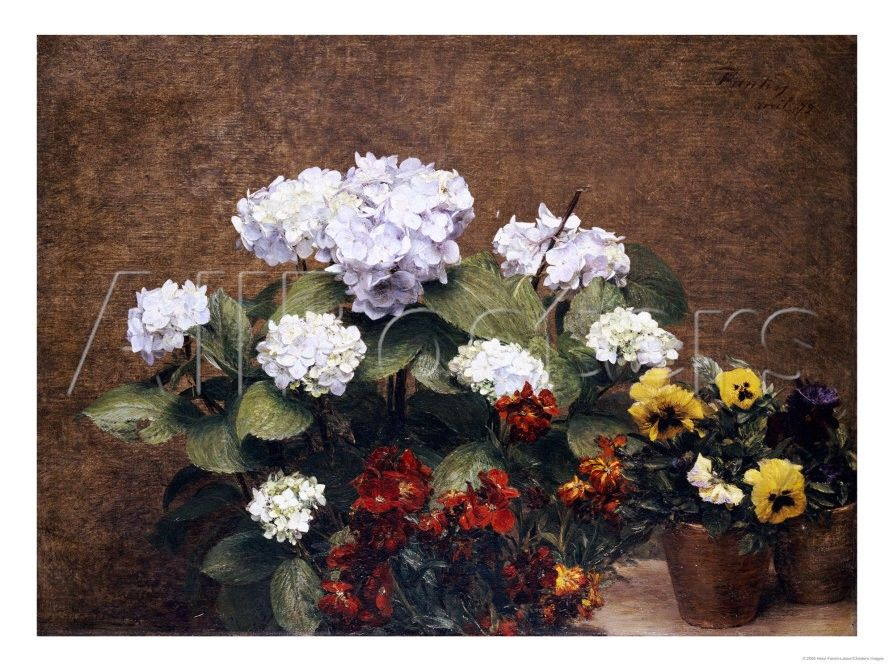 Hydrangeas, Wallflowers and Two Pots of Pansies, 1879 Giclee Print by Henri Fantin-Latour - by AllPosters.ie