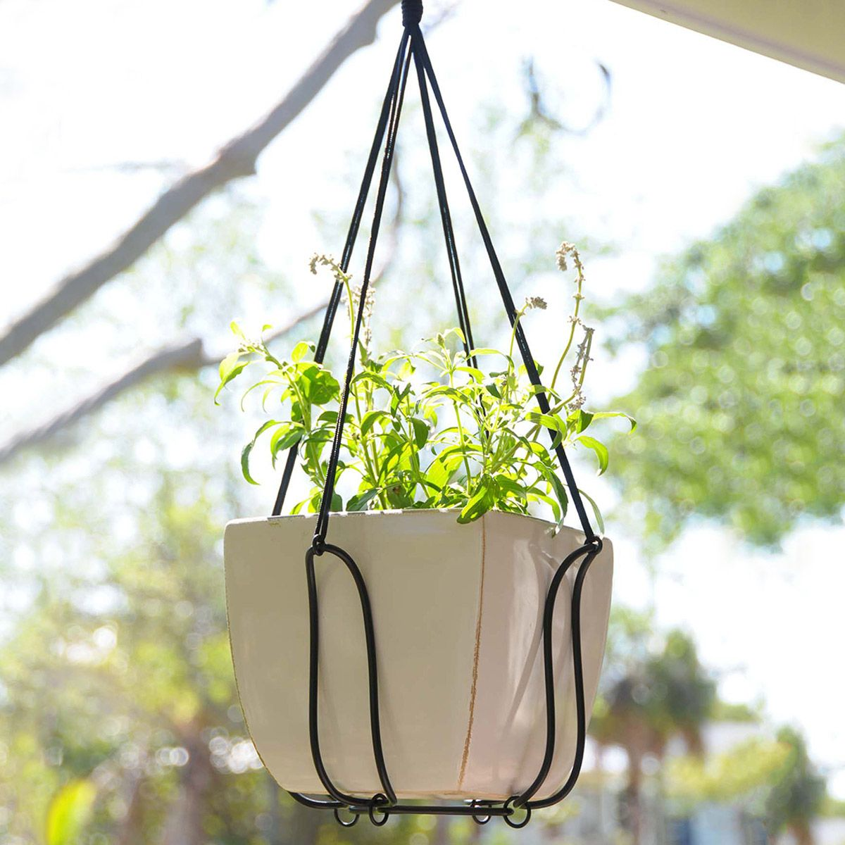 Adjustable Plant Hanger Turns Almost Any Pot Into A