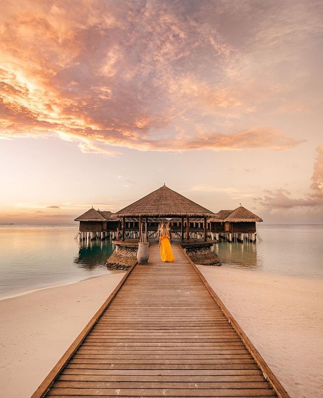 Maafushivaru Maldives ↠ Follow us https://www.instagram.com/p/BfyH0xpgCVg/