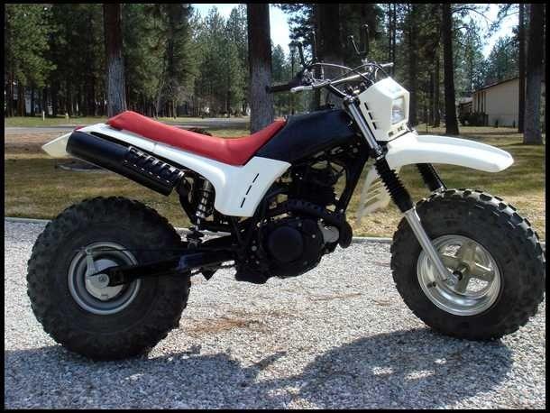 Fatcat Mini Bike Bike Gear Dirt Bike Gear