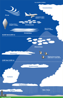 small diagram of all different types of clouds at the altitudes rh pinterest com 8 Different Types of Clouds 8 Different Types of Clouds