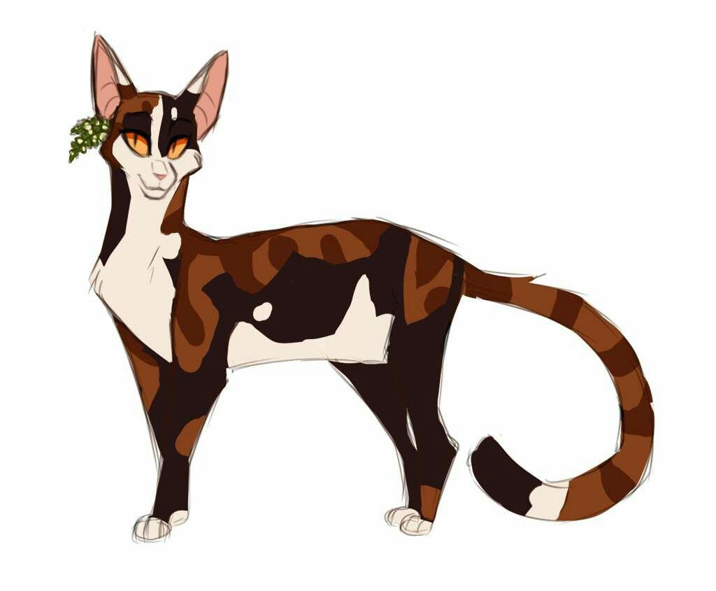Spottedleaf She Cat Warrior Cats Fan Art Warrior Cat Drawings
