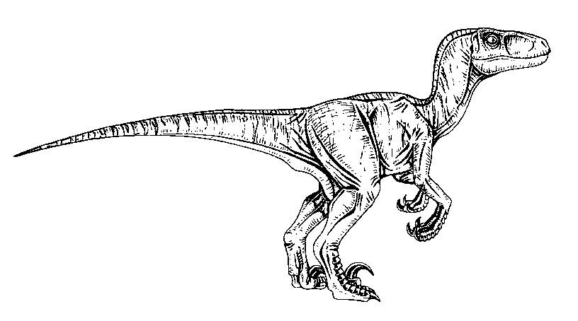 Jurassic World Coloring Pages Coloring Rocks Blue Jurassic World Coloring Pages Jurassic World Movie