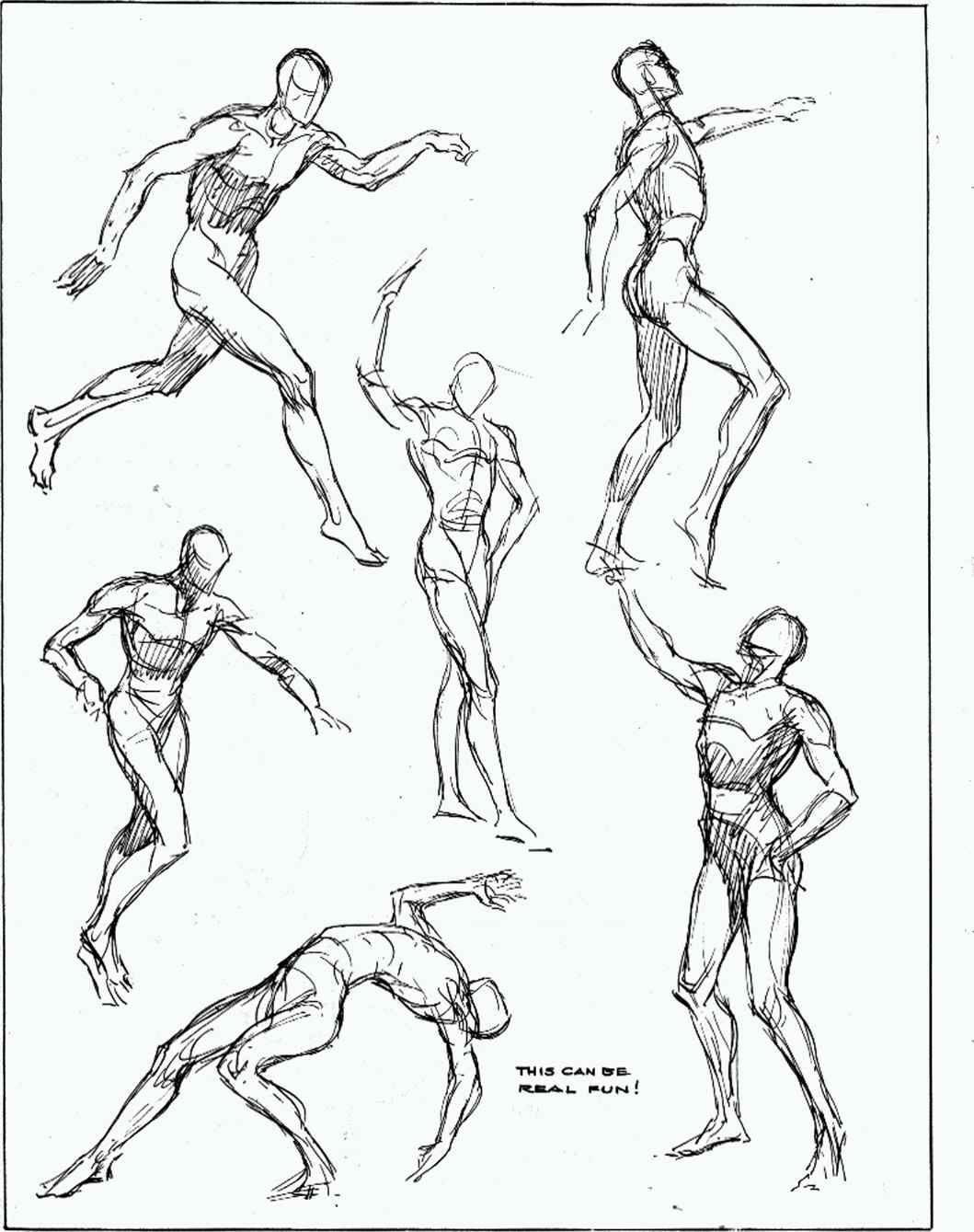 Human Anatomy Sketches Sketch
