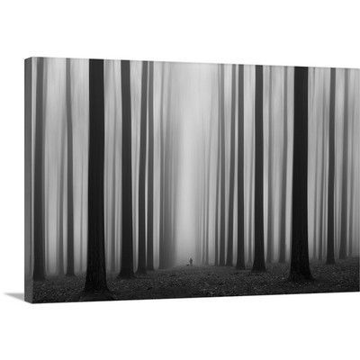 "Canvas On Demand Labyrinth by Jochen Bongaerts Photographic Print on Canvas Size: 24"" H x 36"" W"