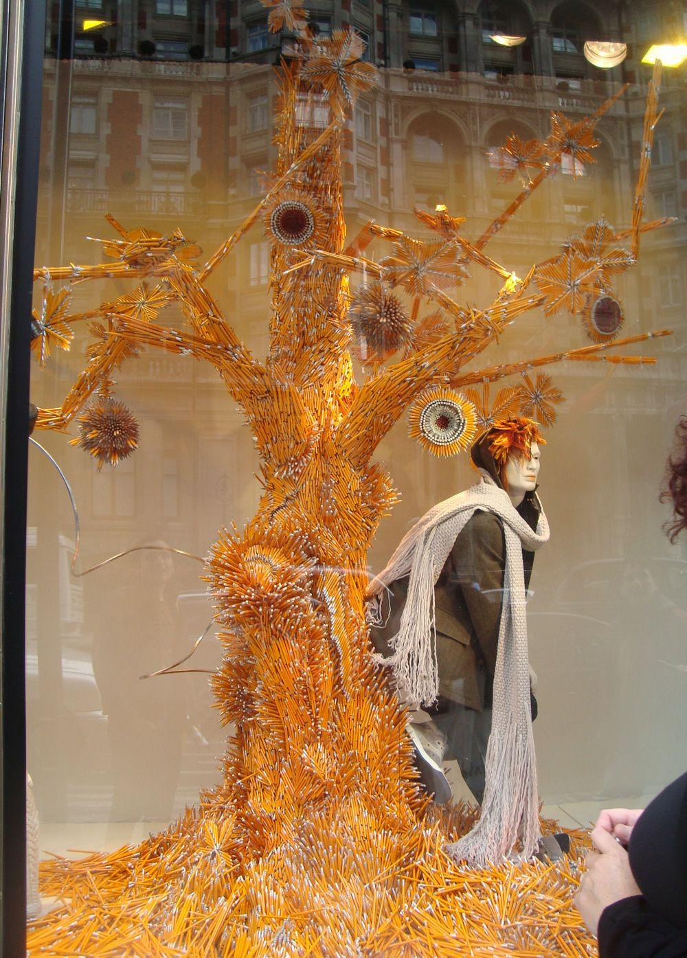 Shop window- Tree made of pencils