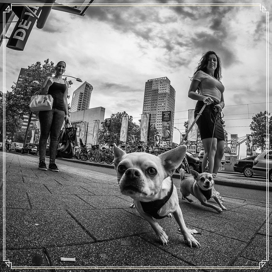 15 Street Photography Tips Fisheye Photography Street Photography Portrait Street Photography People