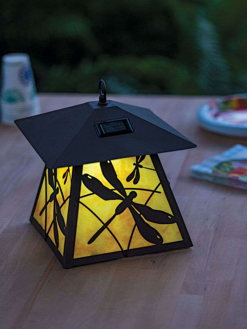 Dragonfly decorative solar lantern gardeners supply in