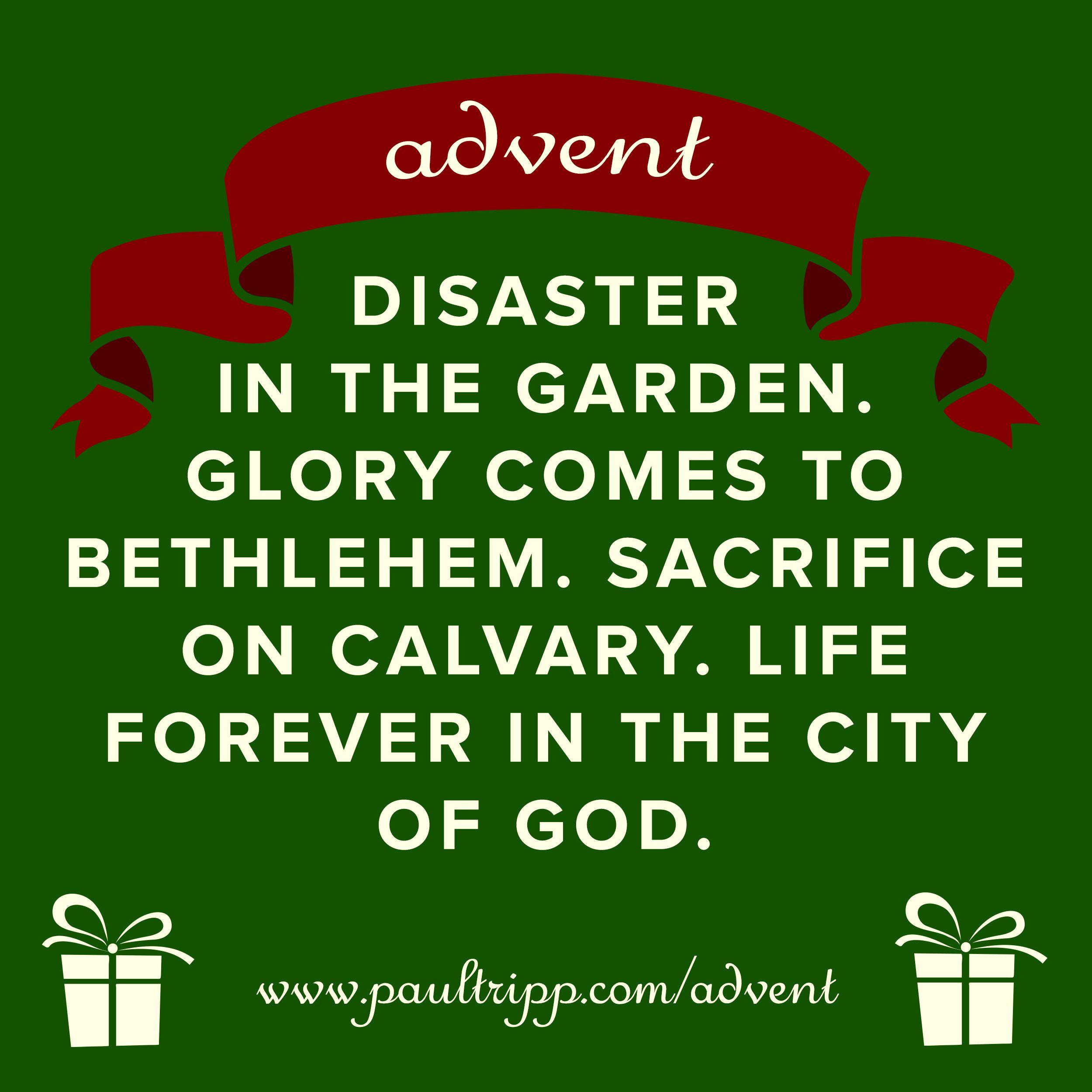 Advent | Paul David Tripp | Paul Tripp Ministries
