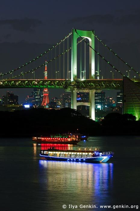 Bridge in Tokyo ~ Honshu Island, Japan
