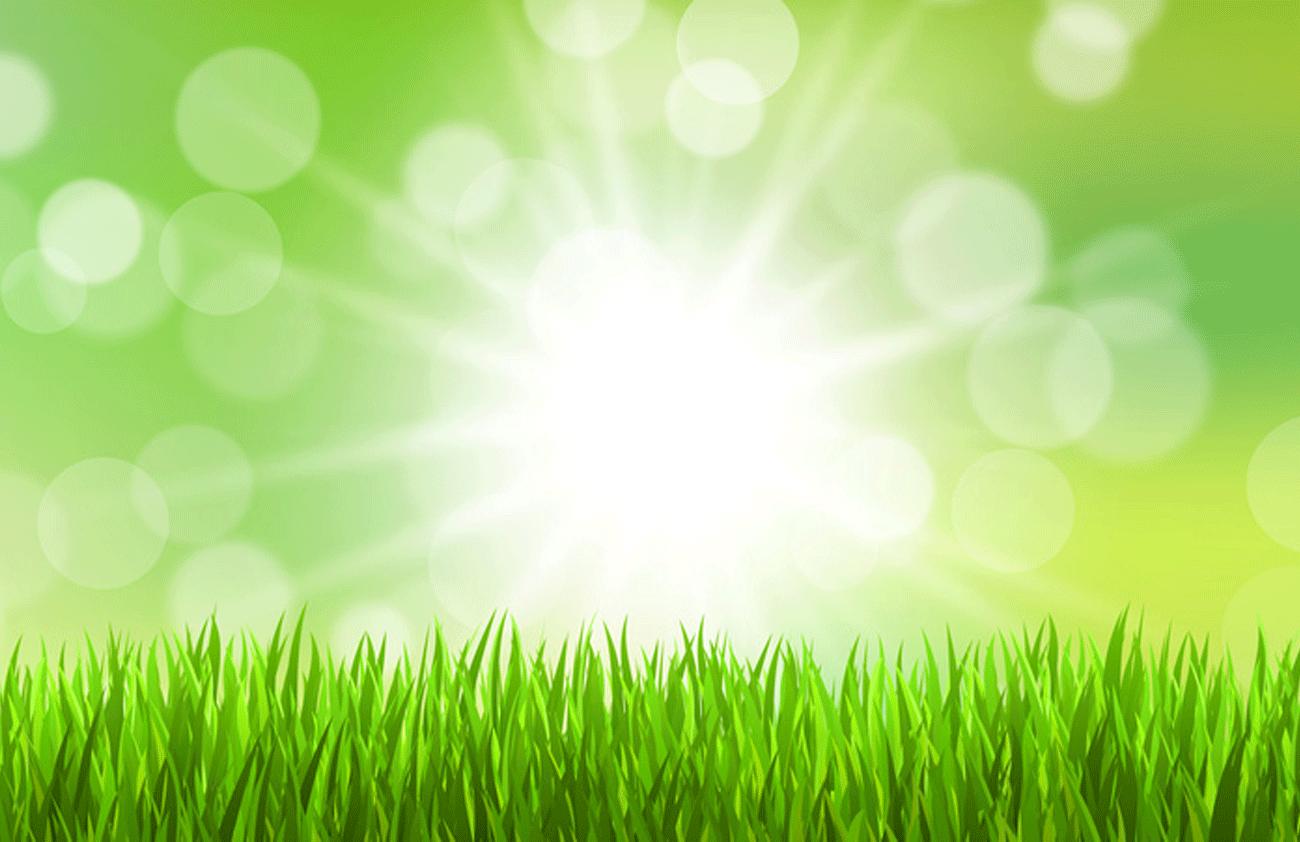 greg-energy – GREG – GERMAN RENEWABLE ENERGY GROUP GMBH