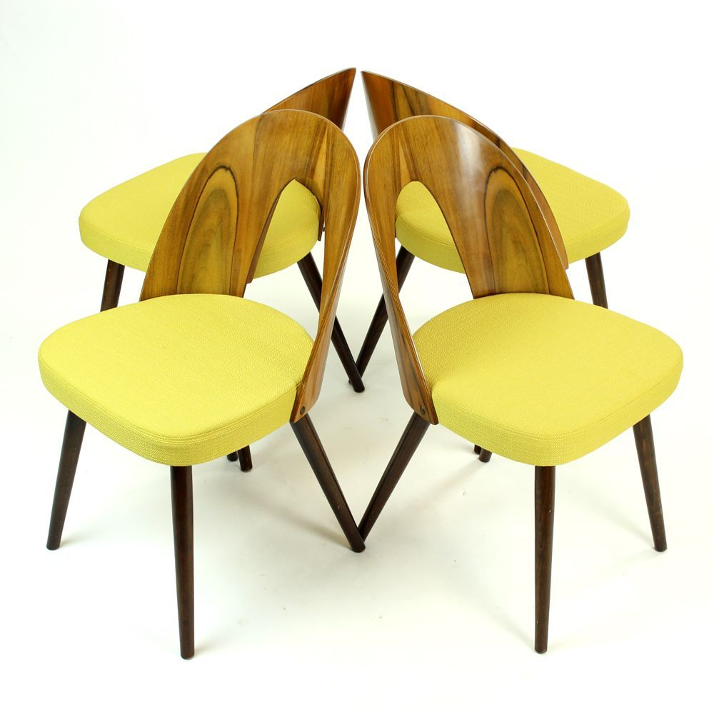 Dining Chairs In Walnut By Antonin Suman For Tatra 1960s With