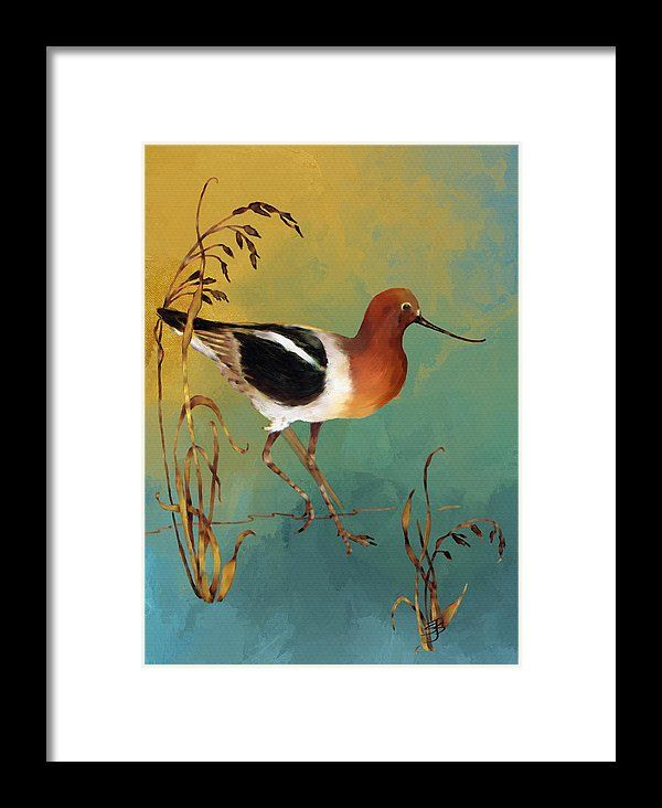 Charming American Avocet This Painting Is An American Avocet Bird. The Bird Is A  Rich Brown Color On The Head And Chest With White And Black Feathers On Theu2026
