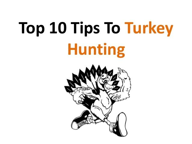 Top 10 Tips for Turkey Hunting