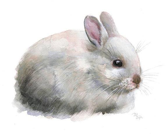 Photo of Rabbit Watercolor – Fine Art Giclee Print White Rabbit