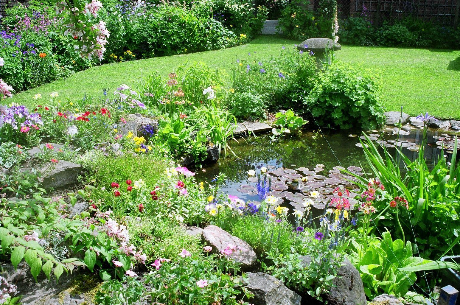 Make a garden for wildlife Nature Is Not Mute Pinterest