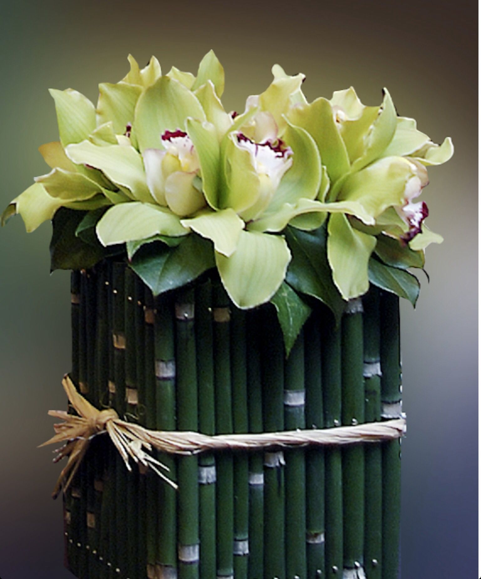 Bamboo and orchids Modern flower arrangements, Orchid