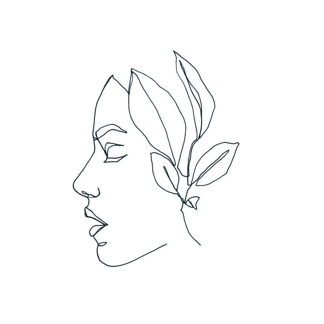 One Line Drawing Plant Portrait Outline Drawings Outline Art Line Art Drawings