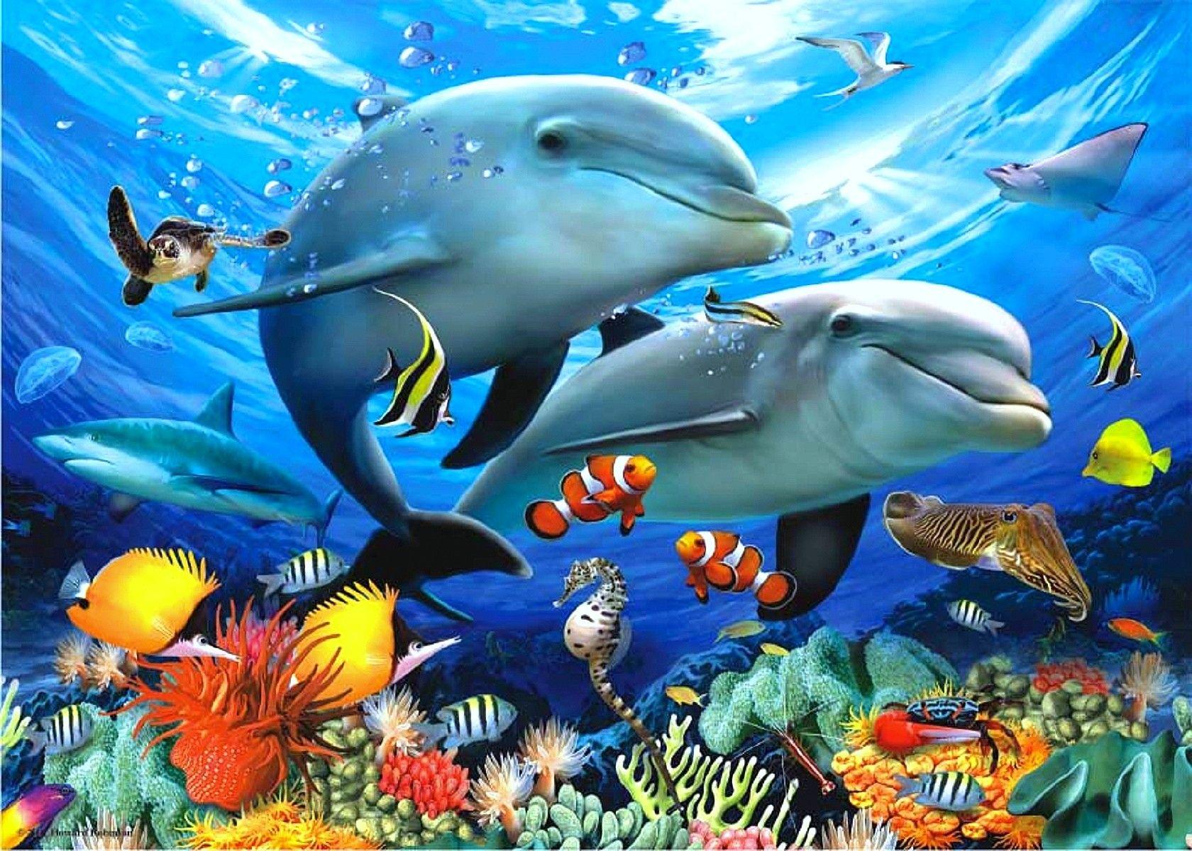 oceansdreamspreunderwateranimalsdownloaded