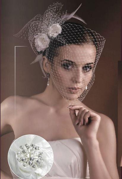 Coiffe Voilette Fleurs Strass Headband Cérémonie