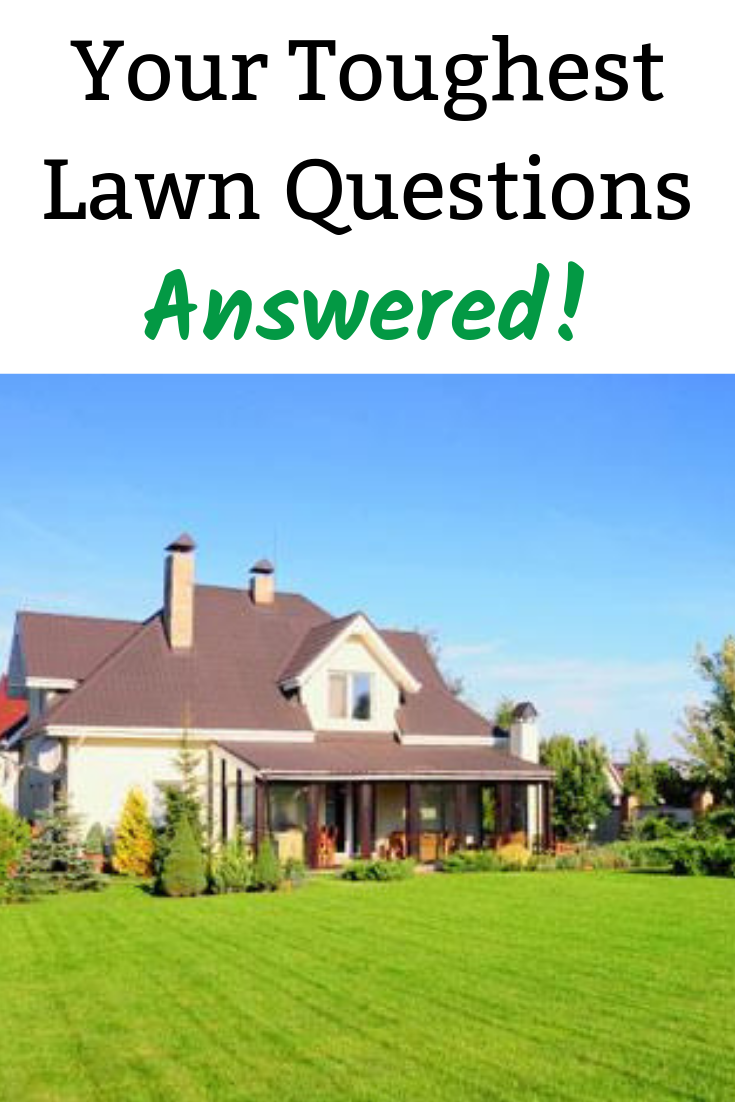 Your Toughest Lawn Questions Answered | Landscaping & Lawn