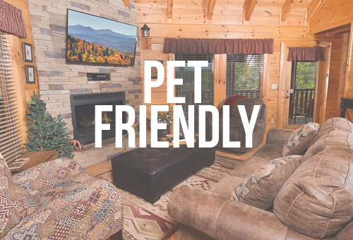 cabins forge cabin pet in rentals tn petvacationbanner hotels pigeon condos and gatlinburg chalets friendly