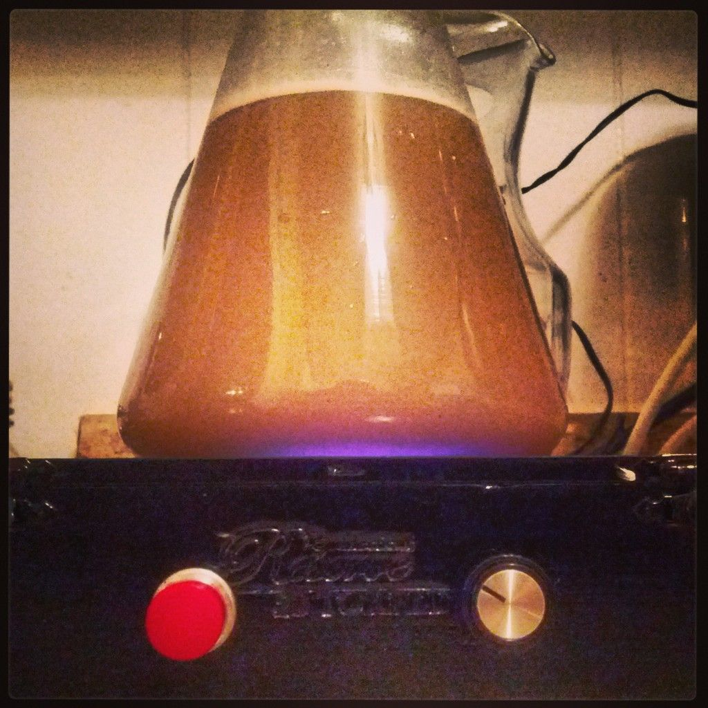 How to create a yeast starter yeast starter home