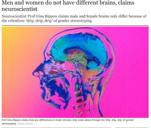 Neuroscientist Prof Gina Rippon, of Aston University, Birmingham, says gender differences emerge only through environmental factors and are not innate.