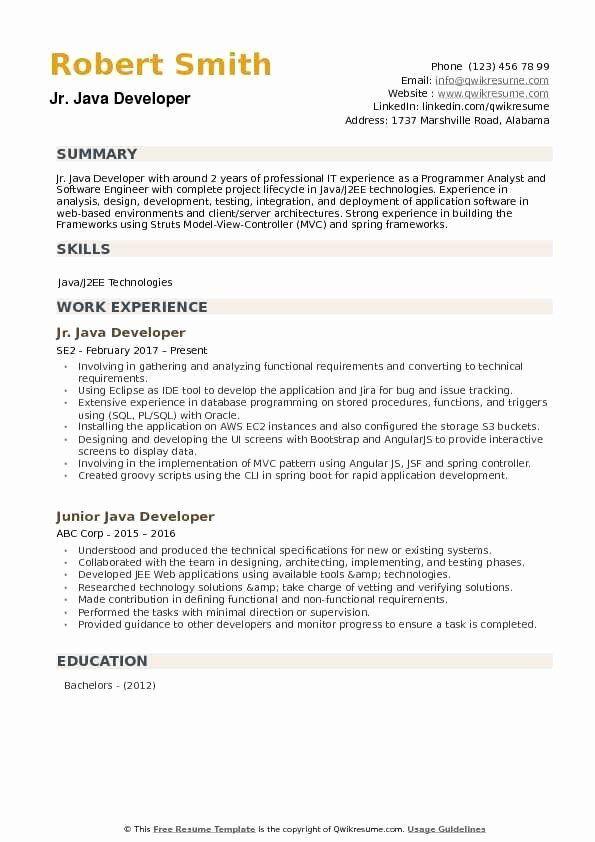 What Is Jr Java Developer Resume Summary Job Resume Samples Medical Coder Resume