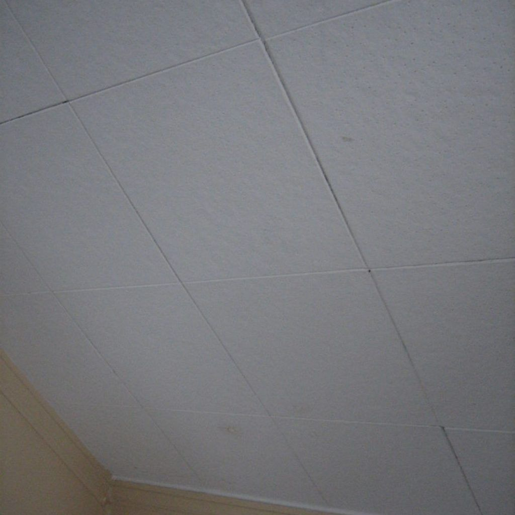 1212 ceiling tiles contain asbestos httpcreativechairsandtables 1212 ceiling tiles contain asbestos dailygadgetfo Image collections