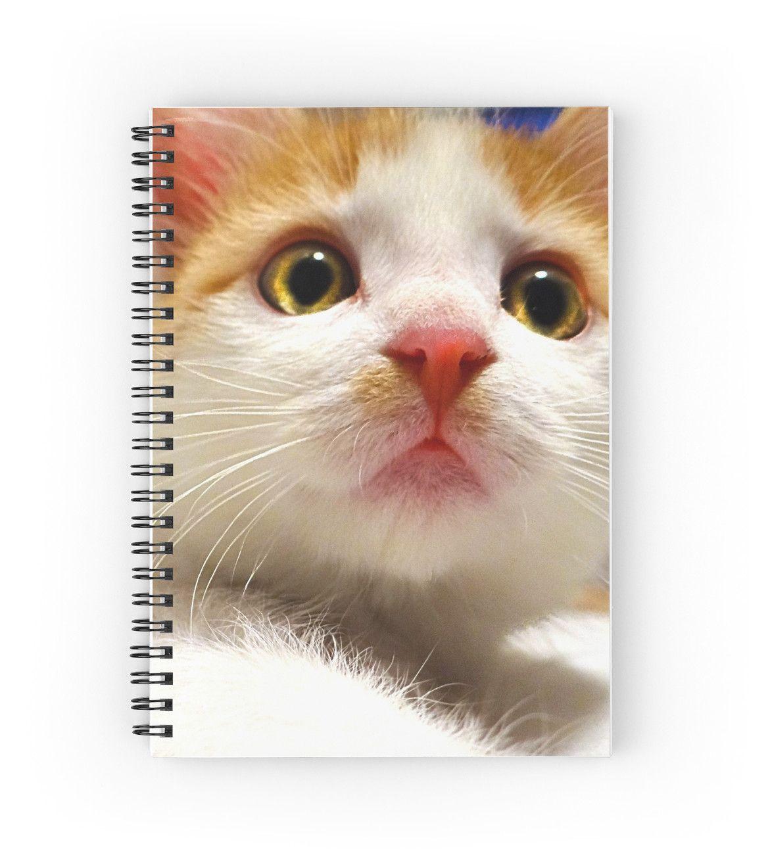 Thea Vancatt Up The Nose Poster By Etskittahz Cat Day Cute