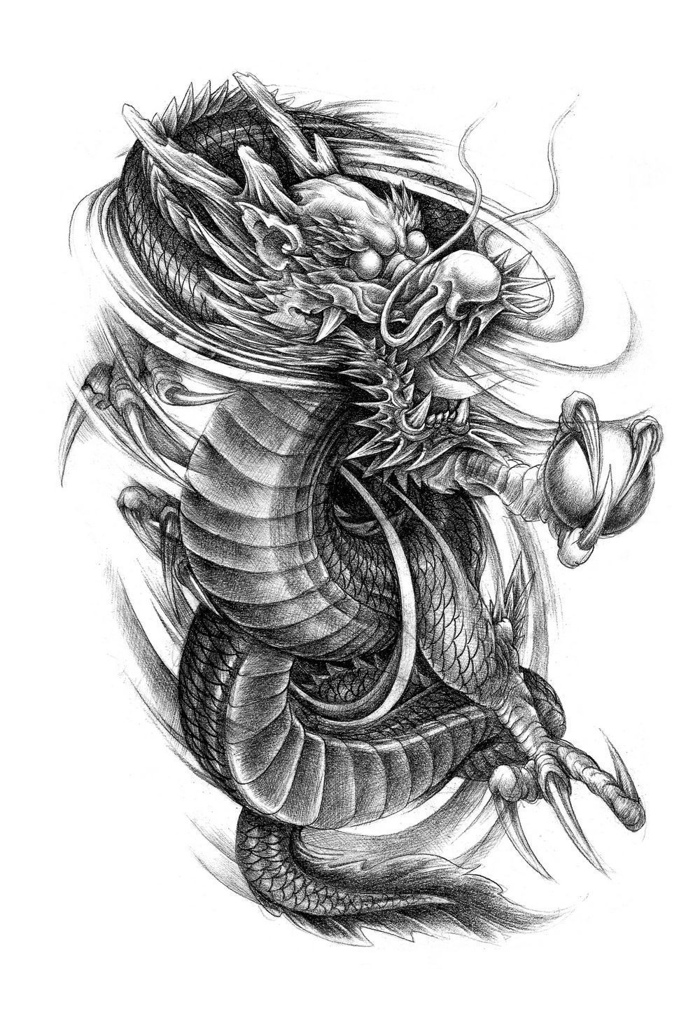 Dragon Phoenix Tattoo Flash Magazine Chinese Style Sketch