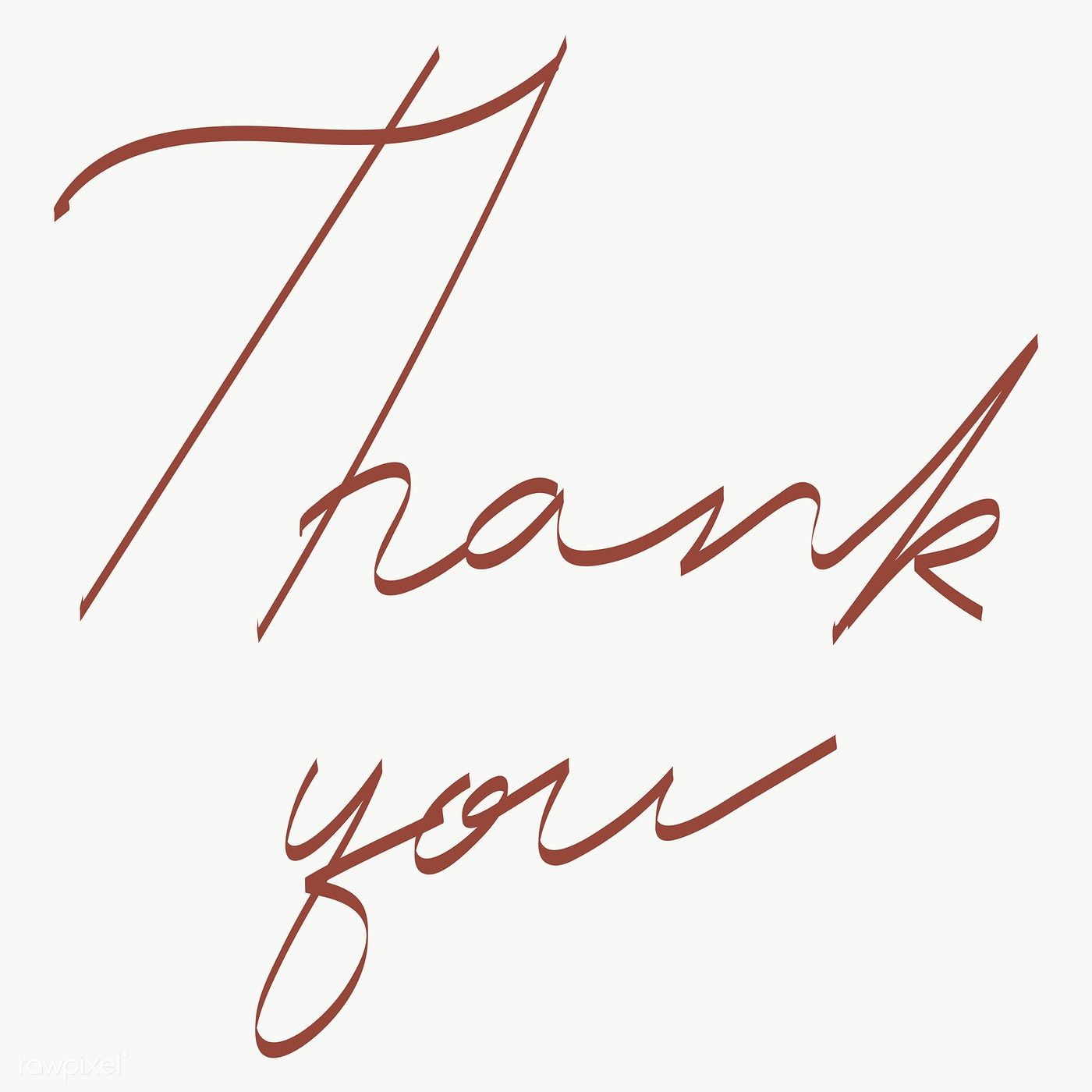 Thank You Handwriting Transparent Png Free Image By Rawpixel Com Aew Thank You Font Thank You Card Design Typography Card