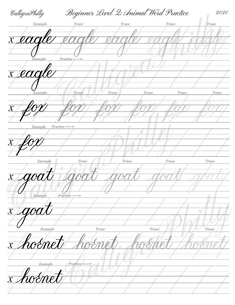 Beginner Level 2 Calligraphy Word Practice Worksheet Animal Etsy In 2020 Calligraphy Words Calligraphy Worksheet Calligraphy For Beginners