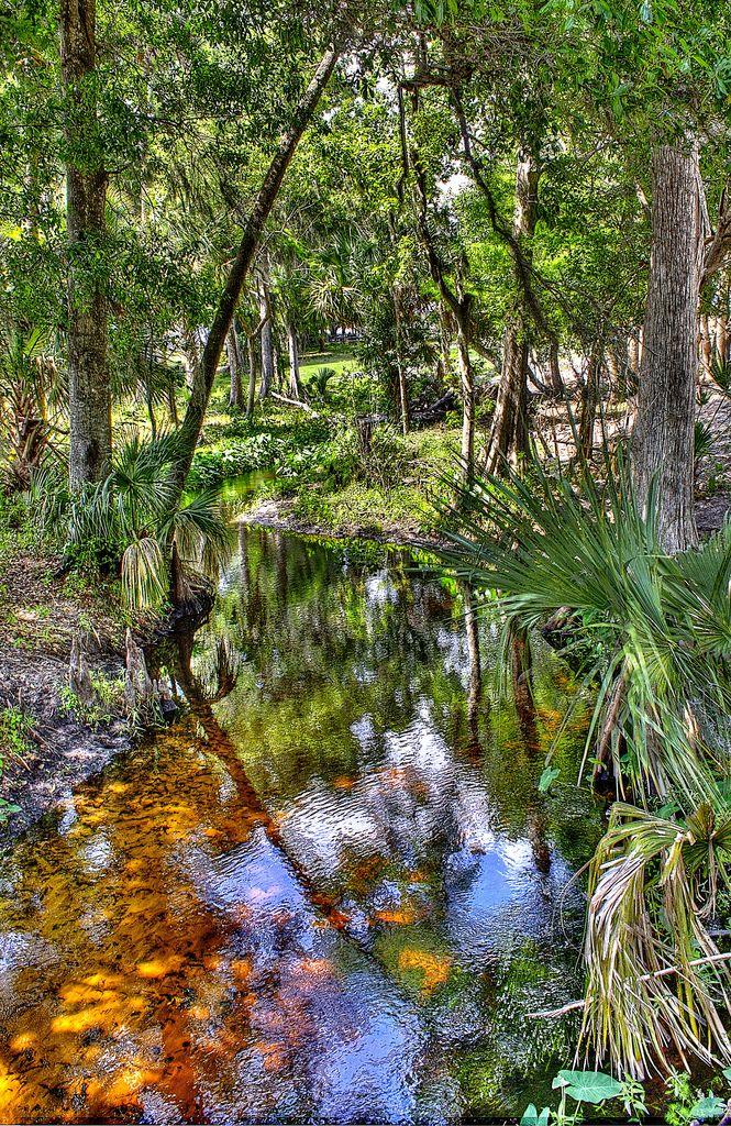 Best 25 Davenport Florida Ideas On Pinterest Davenport