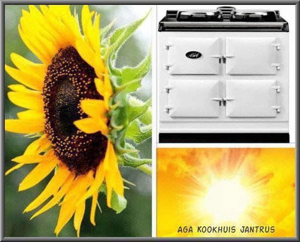 Www.agakookhuisjantrus.nl Een AGA in de zomer! Natuurlijk! De nieuwste Aga Dual Control is gemaakt voor de zomer! De twee kookplaten kunnen onafhankelijk worden aan- en uitgezet. En de ovens van de Aga Dual Control kunnen op een lage energie stand worden gezet. Voordelen Aga Dual Control. 1. De warmte in de keuken wordt gereduceerd. 2. Minder verbruikskosten 3. Tijd over om in de tuin te zitten, want je Aga ovens doen het werk. AGA maakt het wel heel leuk deze zomer.
