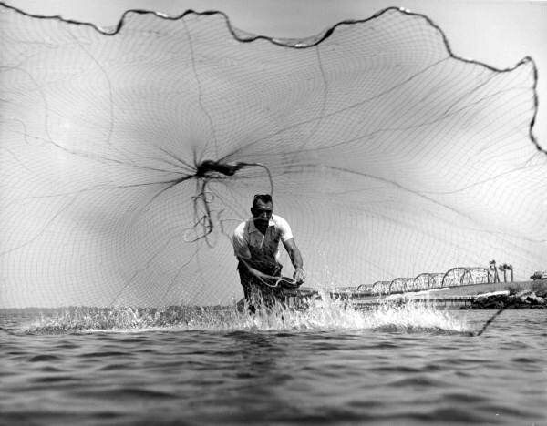 Pin by curtis tanner on cast net throwing with the big for Throw nets for fishing
