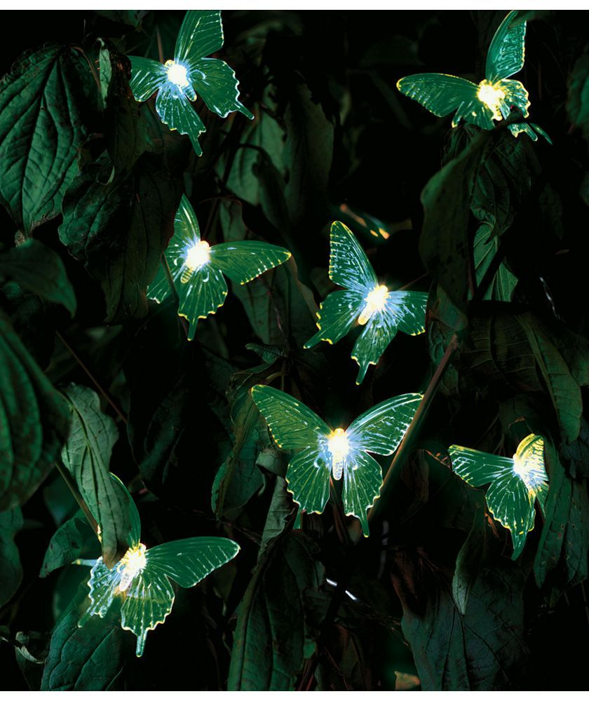 Buy Solar Colour Changing Butterfly Lights Set of 20 at