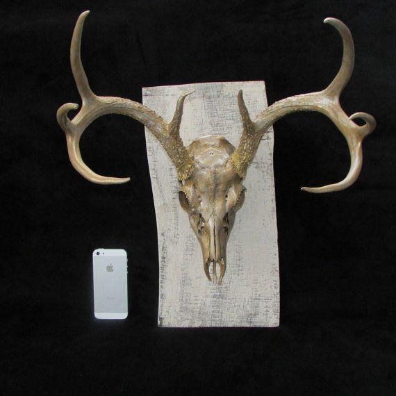 painted deer skull antlers on antique barn wood mount (gold) on Etsy, $225.00