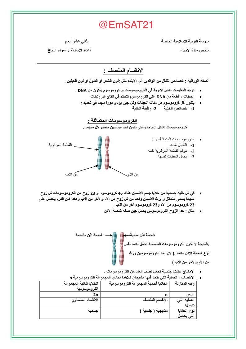 ملخص شامل وتدريبات متنوعة للصف الثاني عشر عام مادة الاحياء Chart Dna Diagram