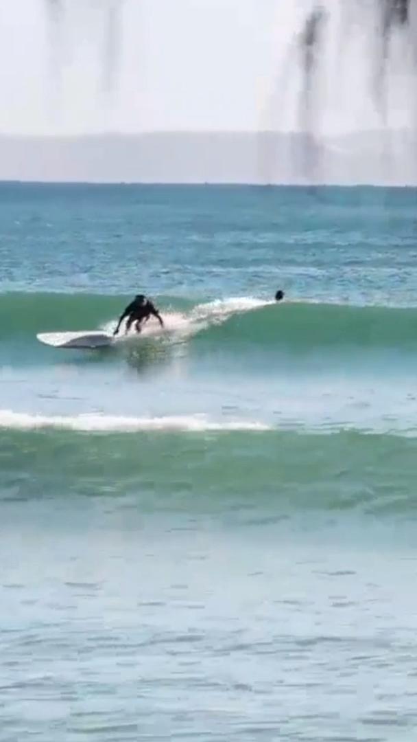 Samuel Crookshanks | Warwick Gow | MS Surfboards | Noosa Heads,Sunshine Coast, Queensland, Australia 📲Visit nobodsurf.com for Full Edit & More Info  #NobodySurf #surfing