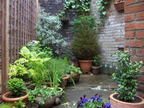 Tiny courtyard ideas google search small interior for Very small courtyard gardens