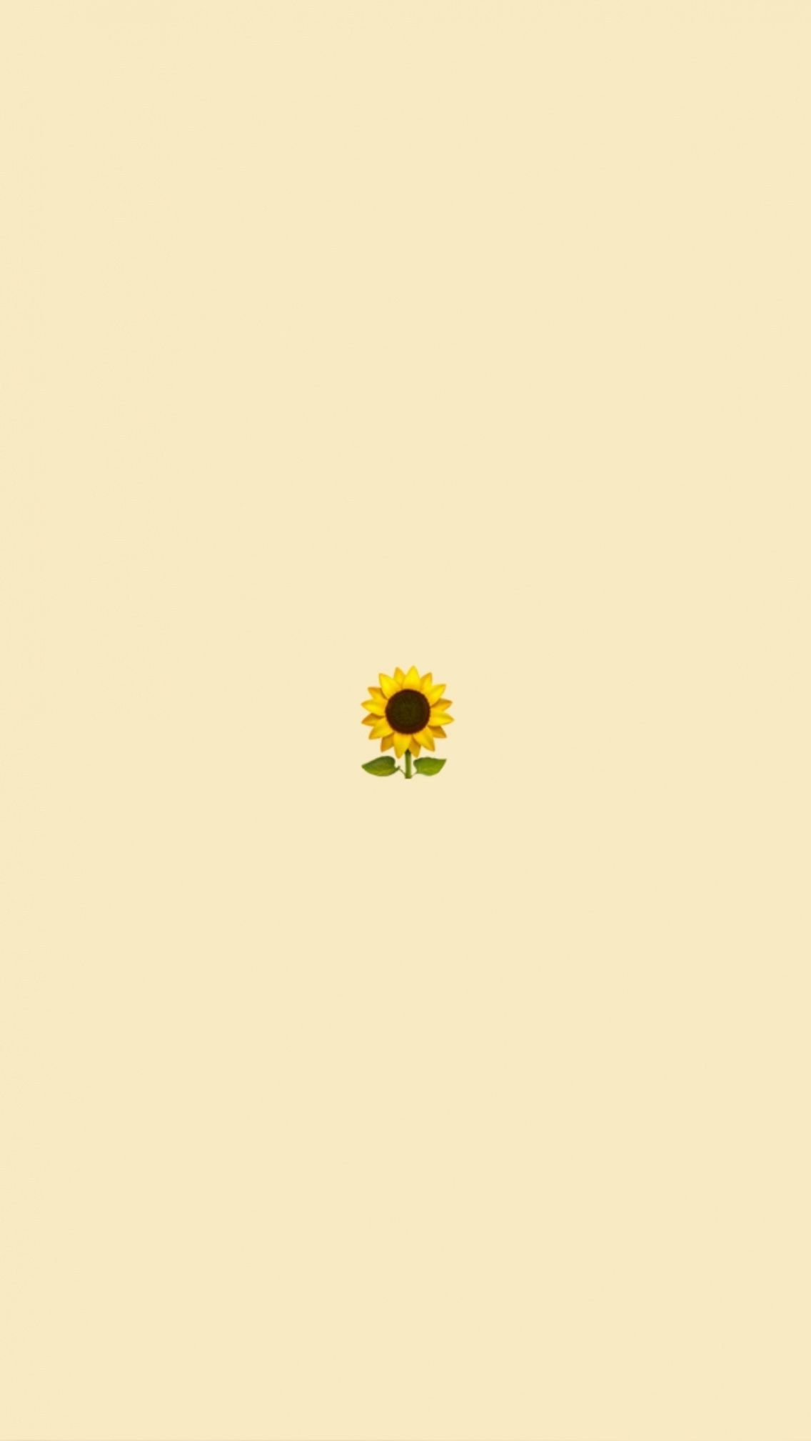 Vsco Cute Wallpapers Lockscreens 590323463639710212 Cute Simple Wallpapers Iphone Wallpaper Yellow Sunflower Wallpaper