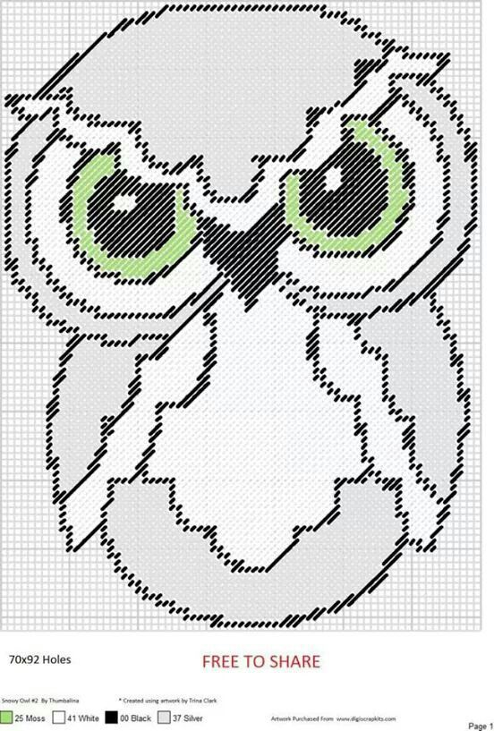 Owl WH