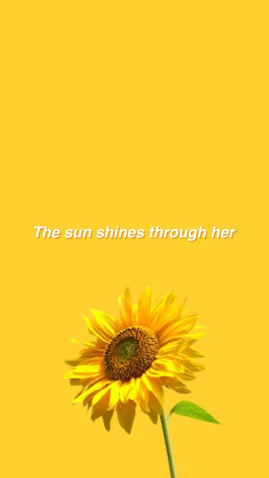 Happy Quotes Iphone Wallpaper Pin By Khatia On Yellow Yellow Quotes Sunflower