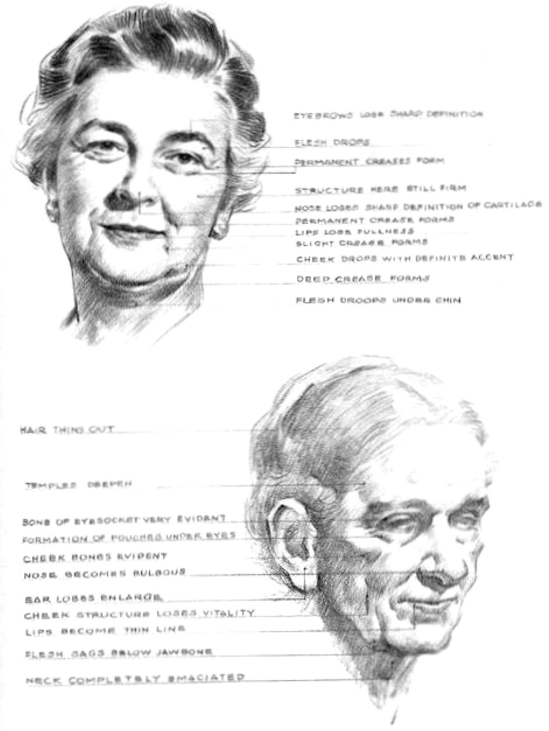 How to draw old elderly aging womens faces
